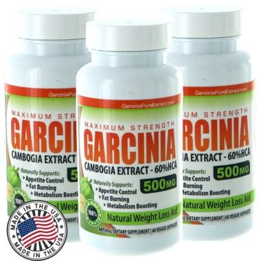 Premium Garcinia Cambogia Extract 500mg with 60% HCA 2 Bottles (60 Capsules each