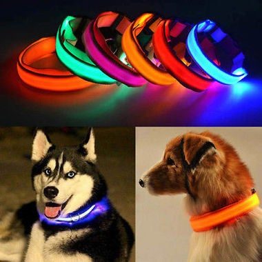 LED Dog Pet Collar Flashing Light Safety Luminous Night Nylon Adjustable S M L X