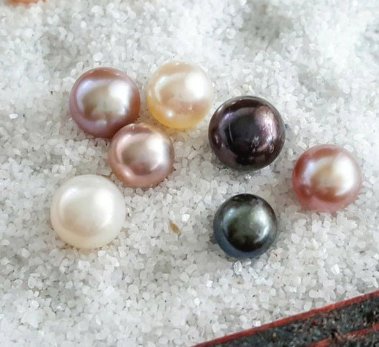 SURPRISE PEARL Oyster and necklace!!