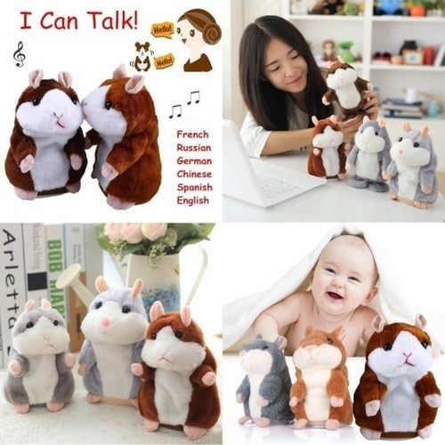 Talking Hamster Plush Toy Hot Cute Speak Talking Sound Record Toy-Great Gift for Family