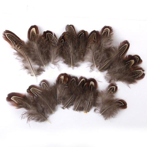 50 Pcs 4-10cm Natural Pheasant Feathers for Dream Catcher DIY Craft Clothing
