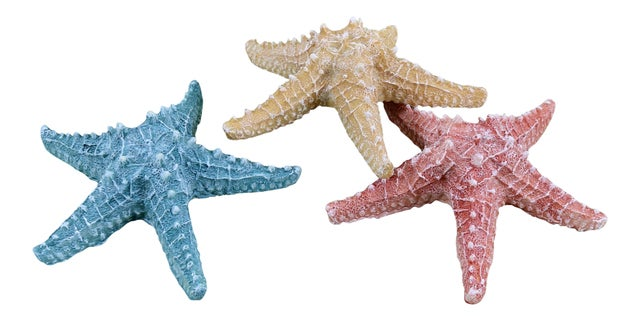 Realistic Dimensional Coastal Starfish Resin Tabletop Decor Set of 3