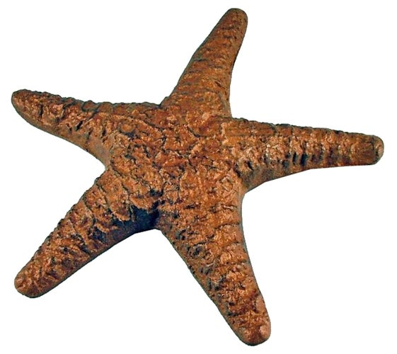 Nautical Tropical Sea Life Starfish Cast Iron Figurine