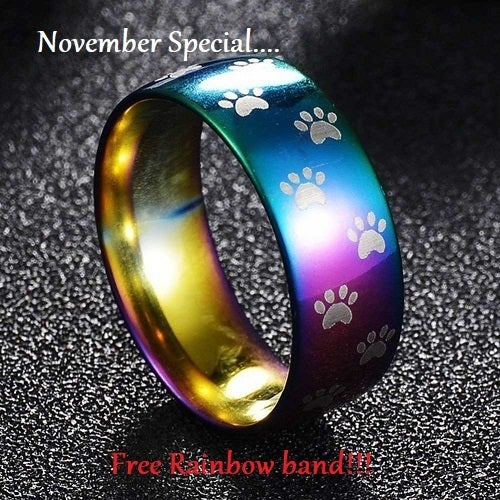 November Special... Free High Polish rainbow band!!! High Polish Rainbow Titanium Stainless steel Dog Paw prints ring. Sizes 7-11 available